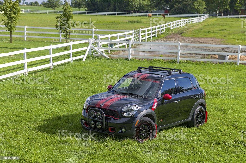 Mini Countryman on the farm royalty-free stock photo