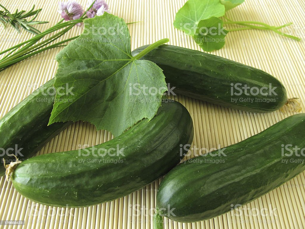 Mini cucumbers royalty-free stock photo