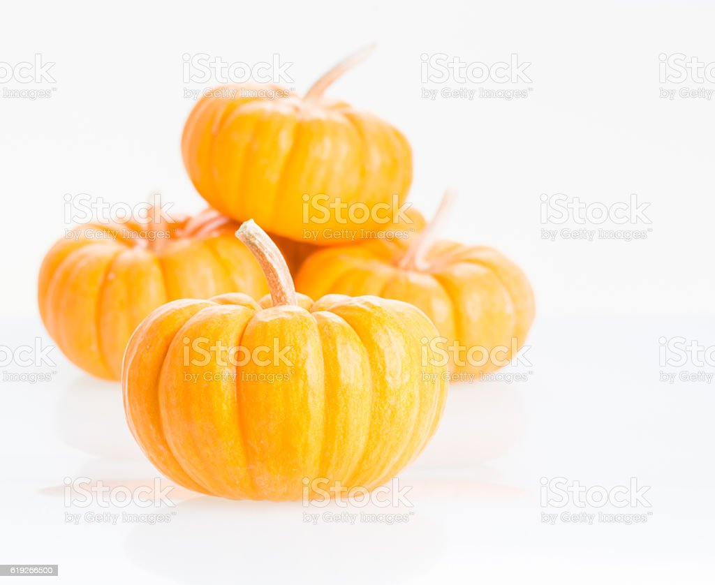 Mini pumpkins close up stock photo