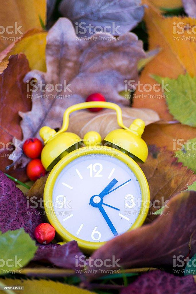 Mini yellow clock among the dried leaves stock photo