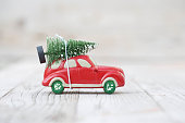 Miniature cat with fir tree
