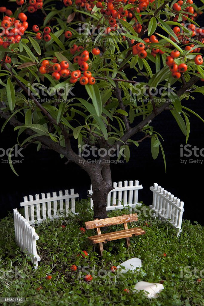 Miniature garden in a flower pot royalty-free stock photo