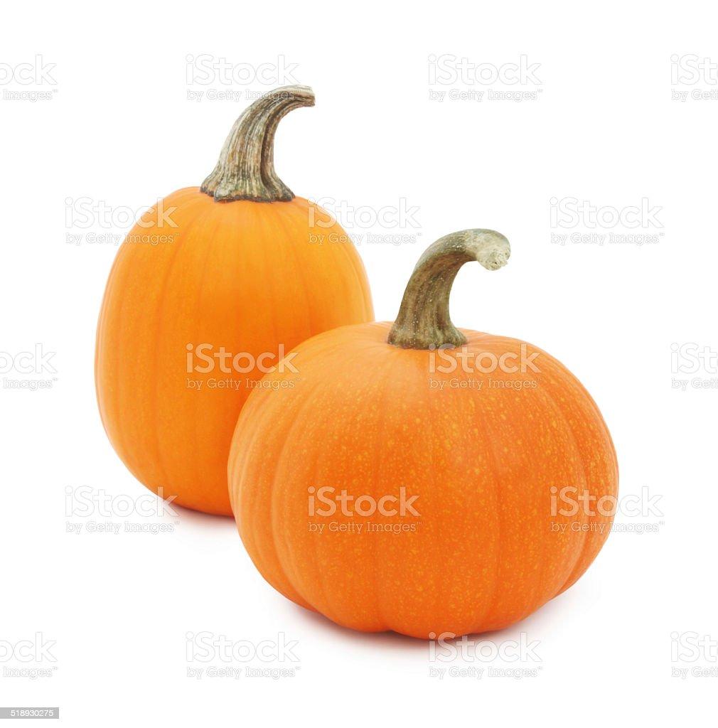 Miniature pumpkins stock photo