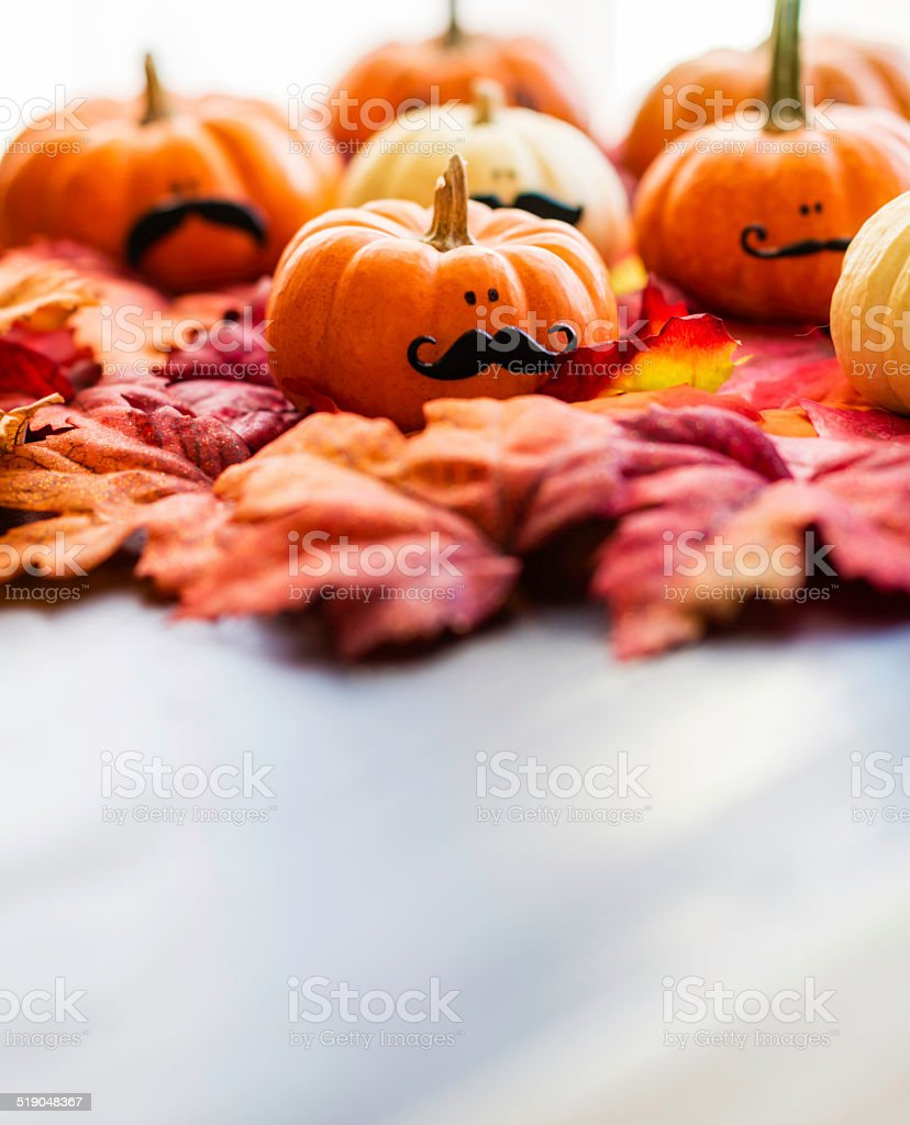 Miniature pumpkins wearing mustaches for Movember stock photo