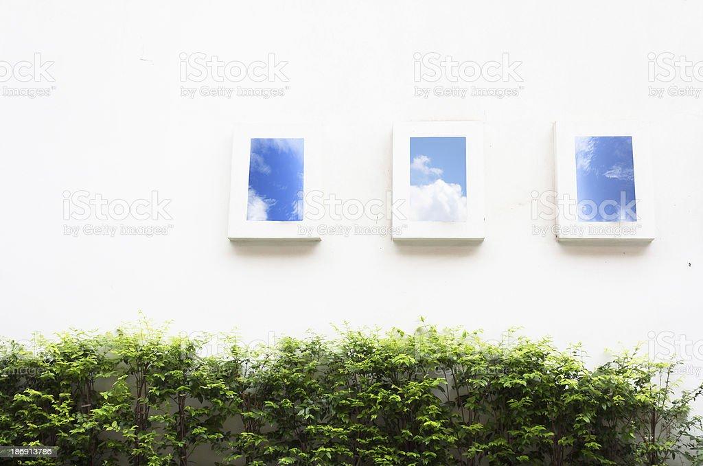 Минимальное окна голубого неба и зеленый филиал внутри Стоковые фото Стоковая фотография