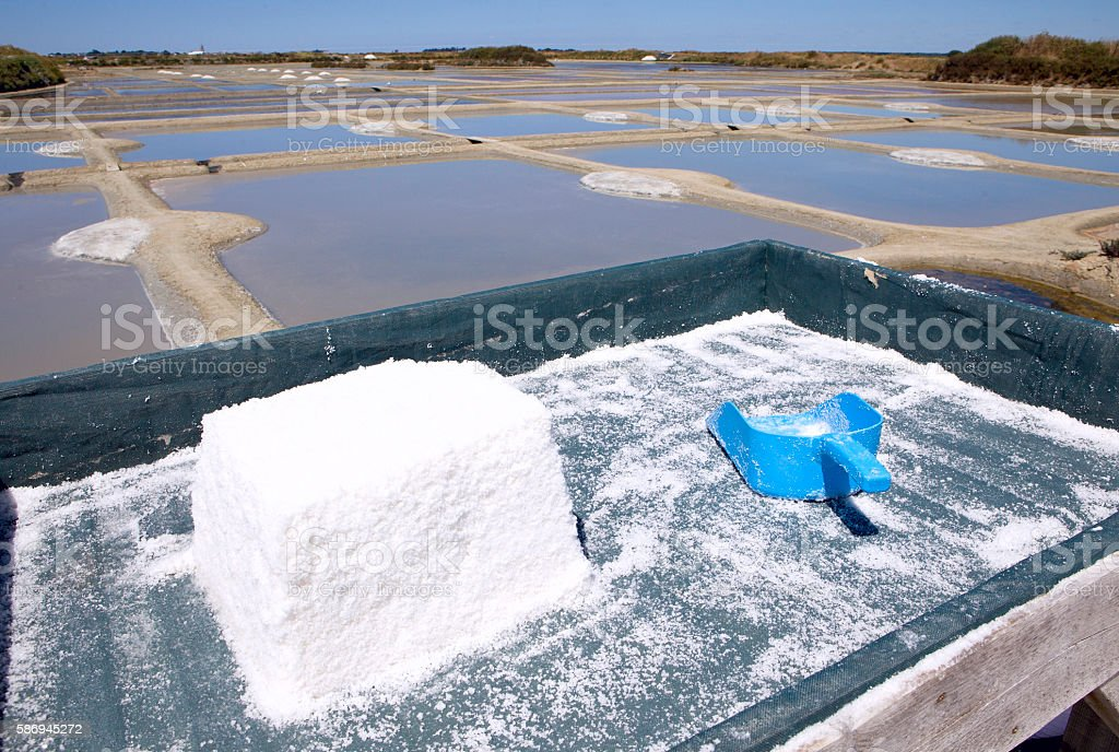 mining salt, Guerande stock photo