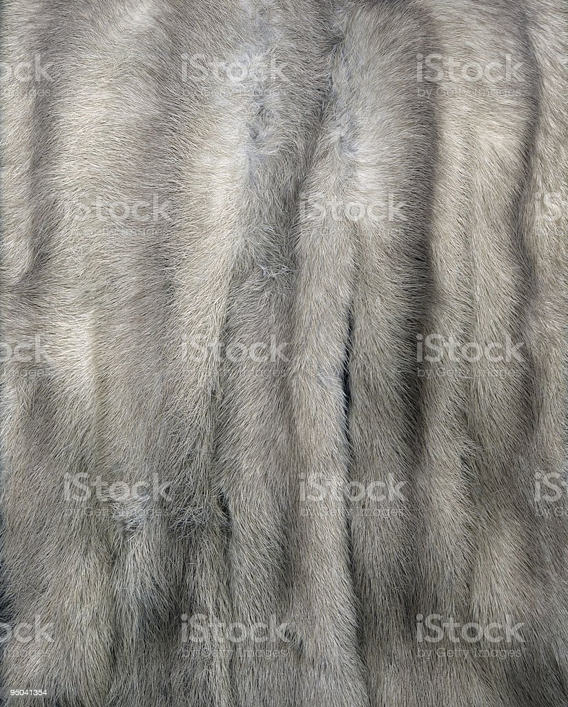 Mink Fur Gray stock photo