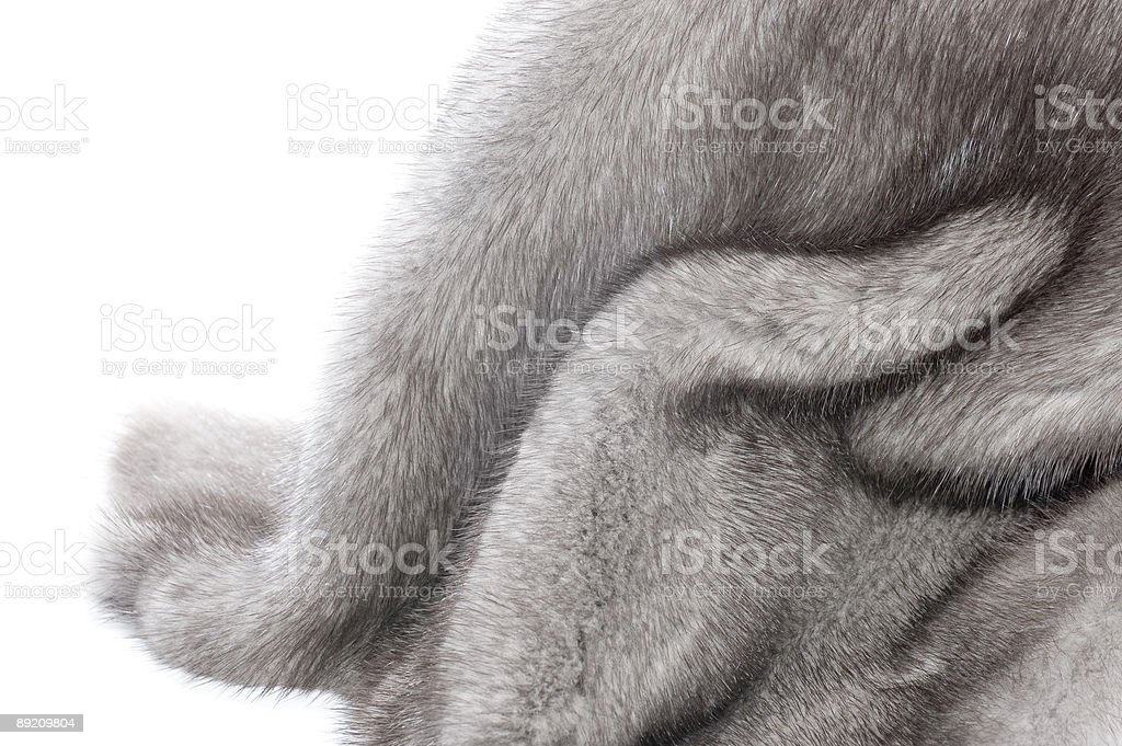 Mink Fur isolated stock photo