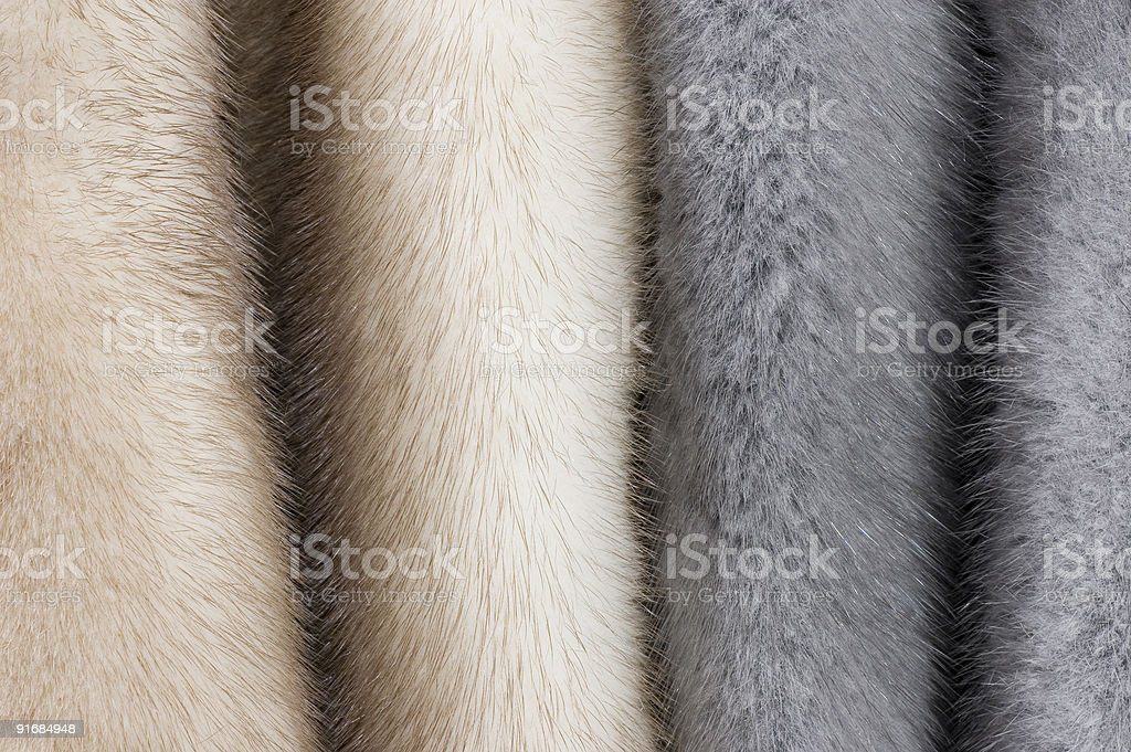 Mink fur stock photo