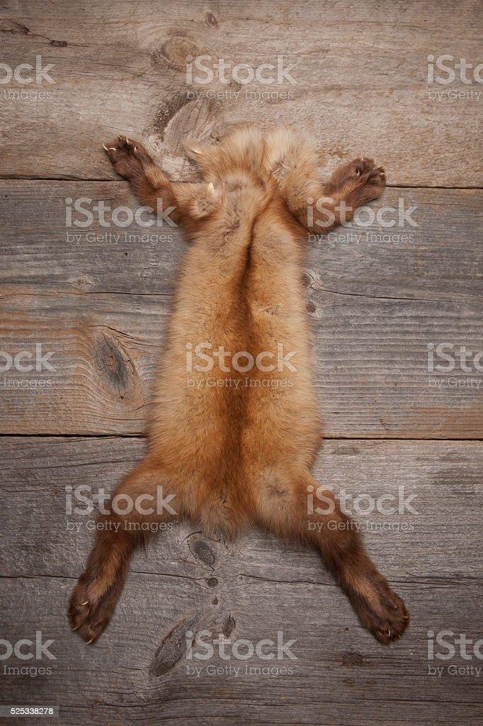 Mink Skin on Wooden Surface stock photo