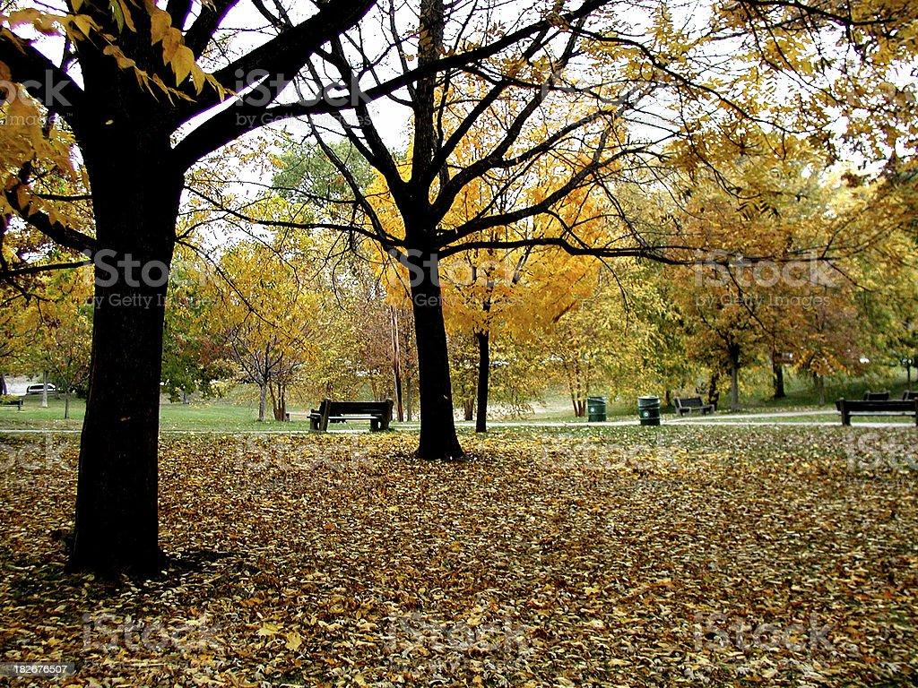 Minneapolis Park in late Autumn stock photo