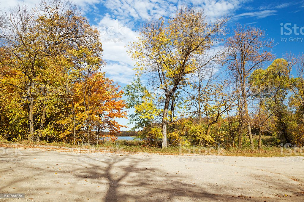 Minnesota Autumn  - Colorful Trees on Edge of Country Road stock photo