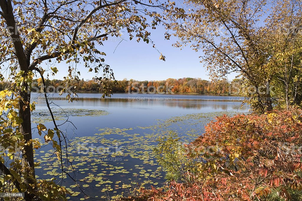 Minnesota Lake Landscape Scenery in Autumn with Trees and Forest royalty-free stock photo
