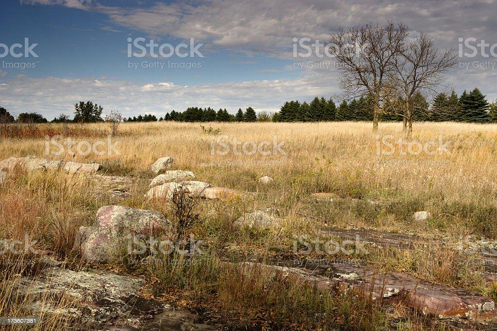 Minnesota Prairie royalty-free stock photo