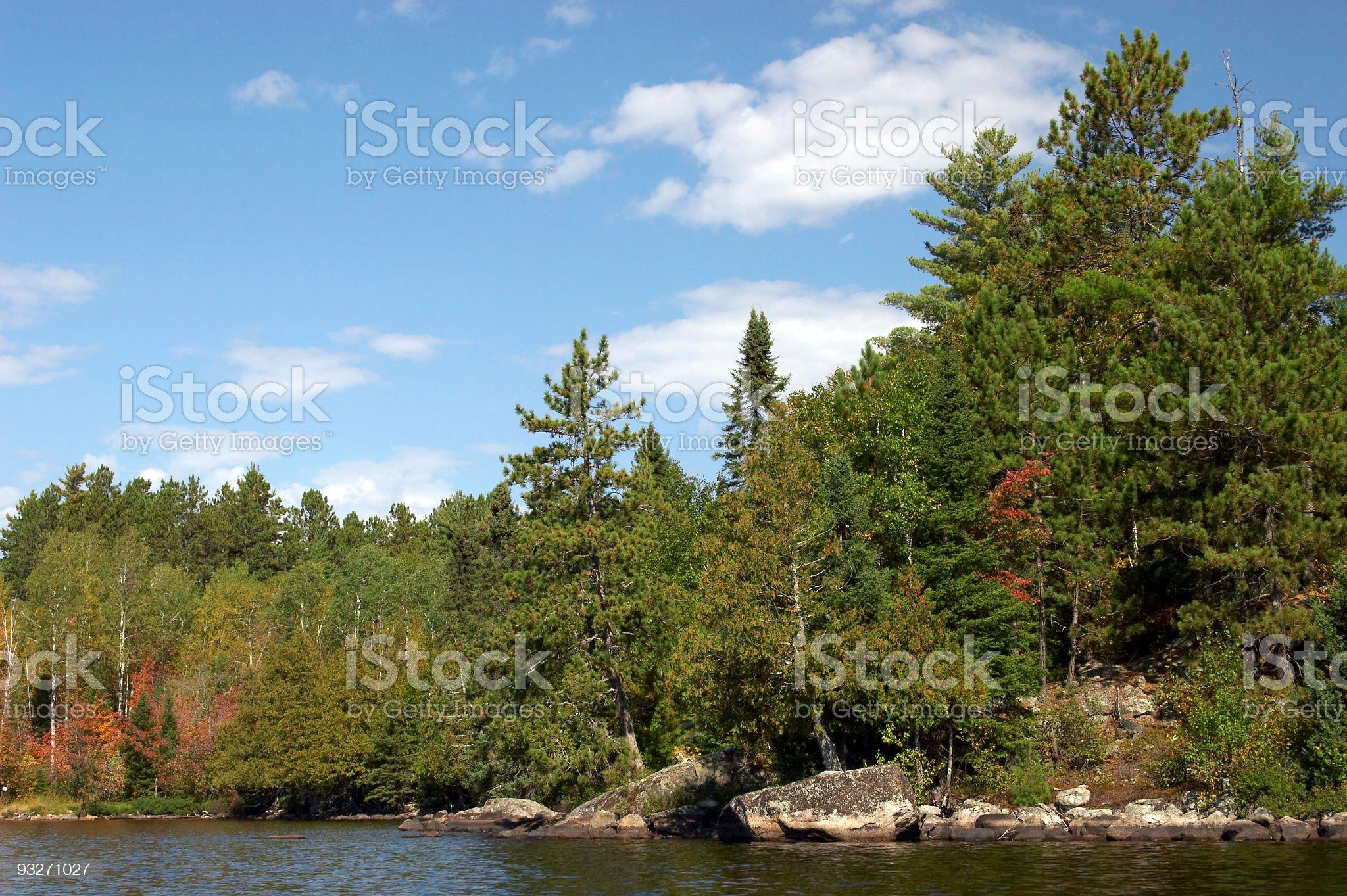 Minnesota Shoreline royalty-free stock photo