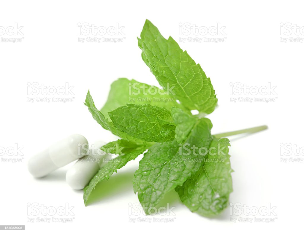 mint and drugs royalty-free stock photo