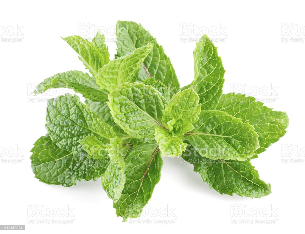 Mint leaves isolated on a white background stock photo