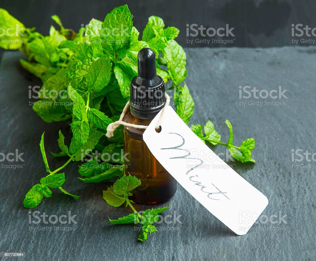 Mint oil bottle with mint leaves and label stock photo