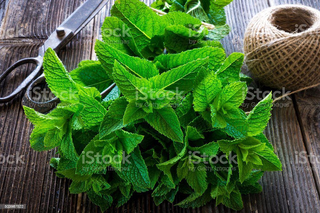 Mint on natural wooden background stock photo