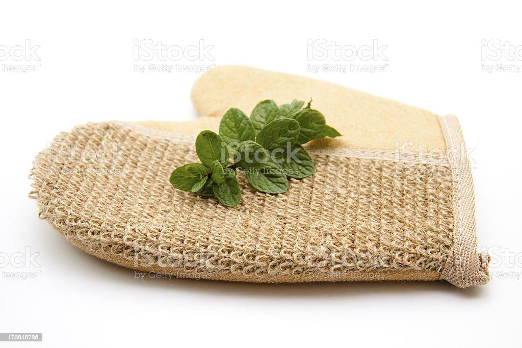 Mint on pot glove stock photo