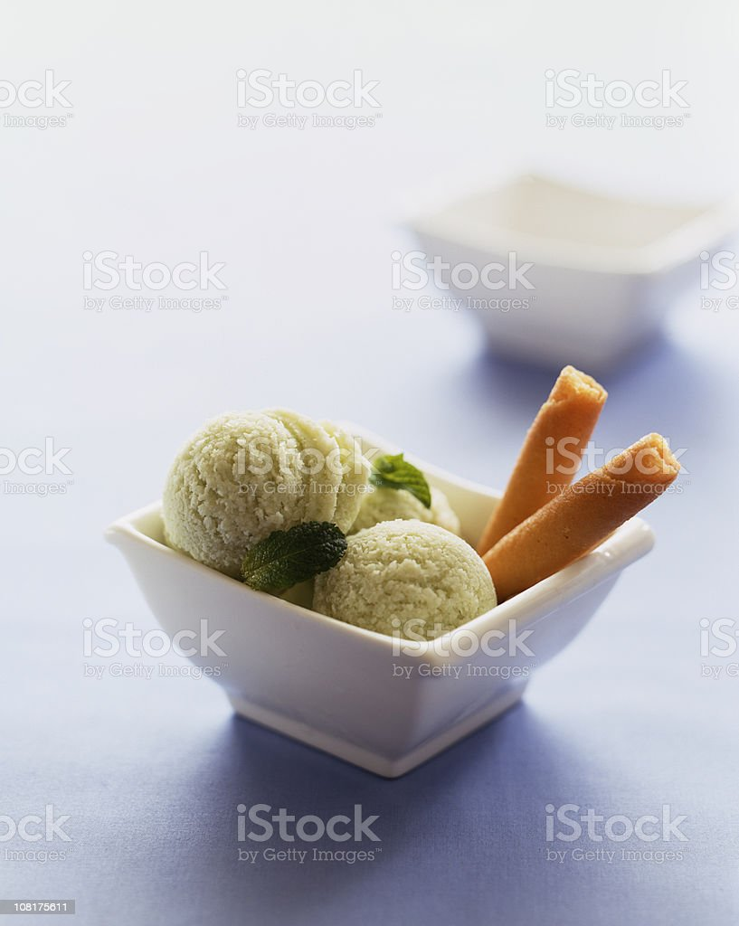 Mint Sorbet with Cookies in Bowl stock photo