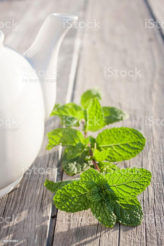Mint tea in teapot stock photo