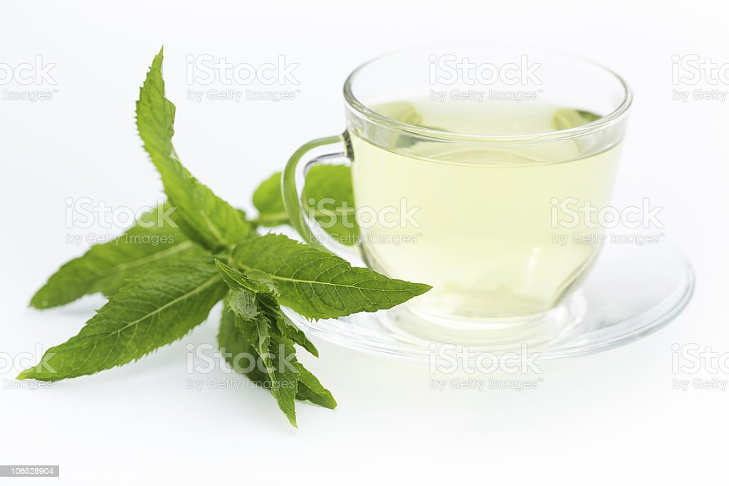 Mint tea royalty-free stock photo