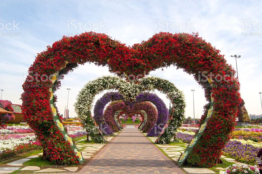 Miracle Garden, Dubai, United Arab Emirate, stock image stock photo