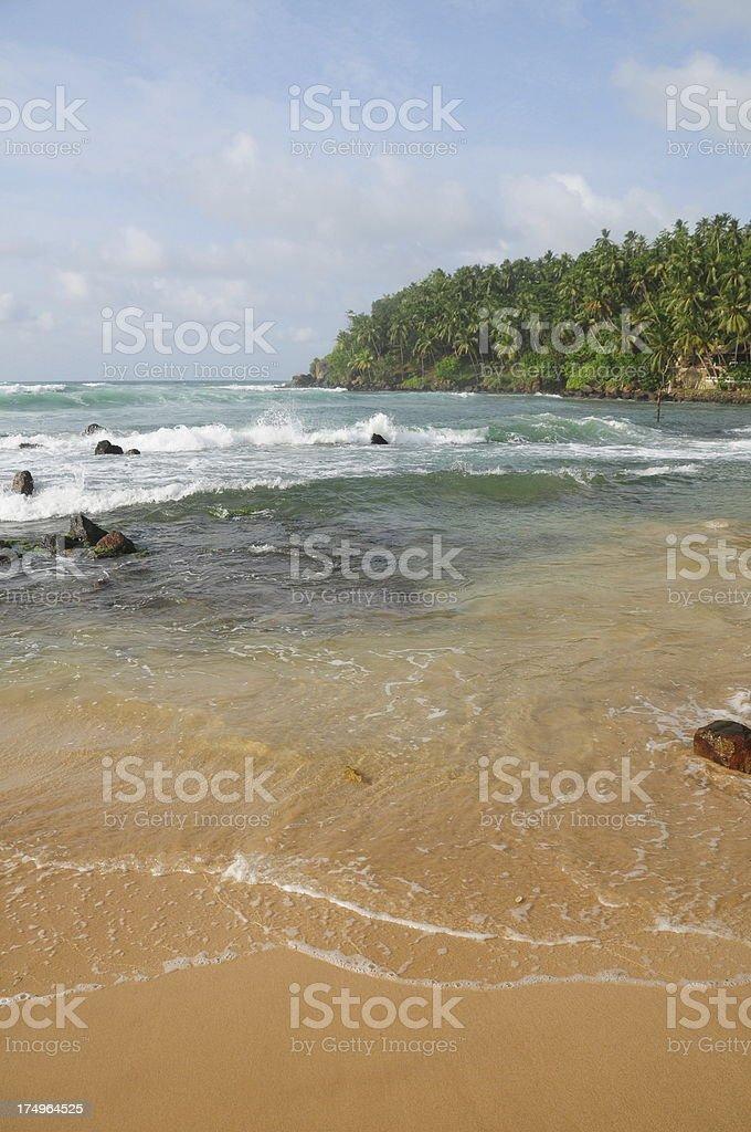 Mirissa Beach, Sri Lanka. royalty-free stock photo