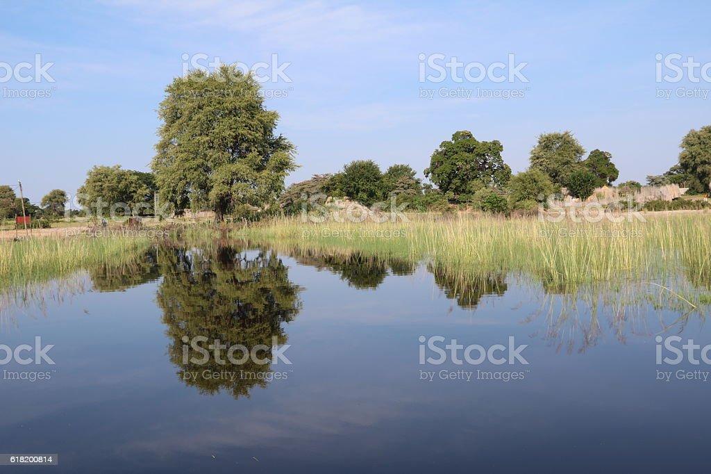 Mirror image in the Okavango, Caprivi strip of Namibia Africa stock photo