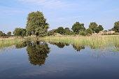 Mirror image in the Okavango, Caprivi strip of Namibia Africa