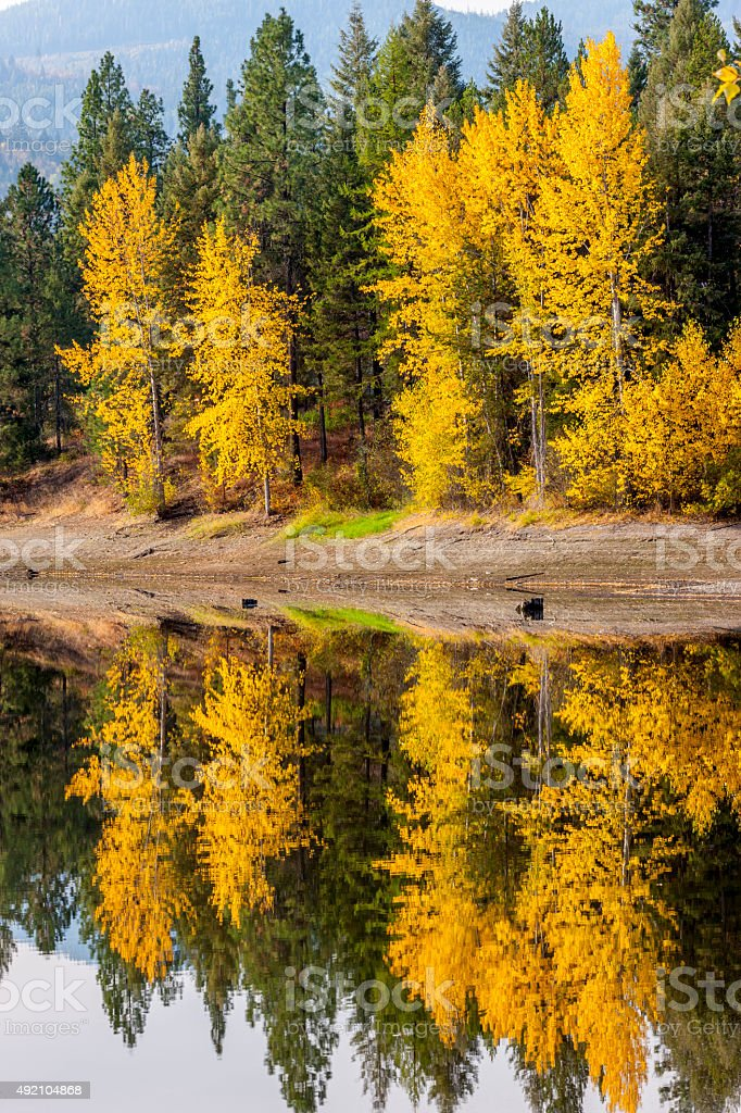 MIrror image of fall colors. stock photo
