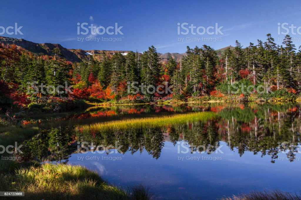 Mirror Pond,Daisetsuzan National Park in Hokkaido,Japan. stock photo