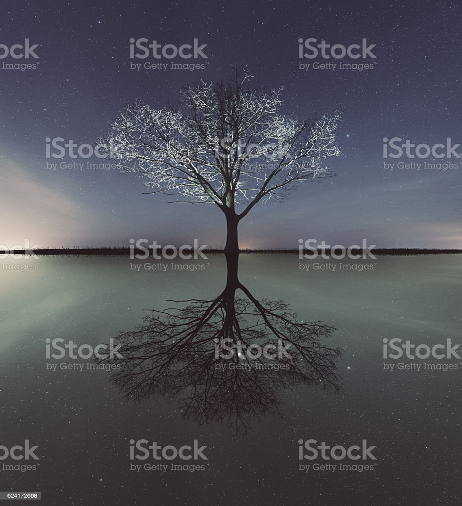 Mirrored Reality stock photo