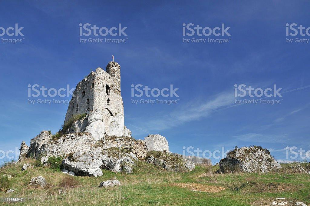 Mir?w castle stock photo