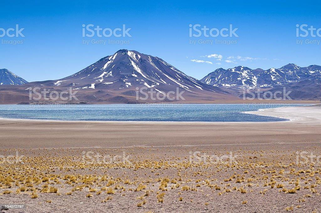 Miscanti Lagoon stock photo
