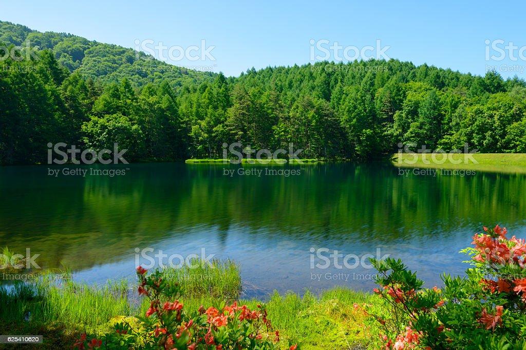 Mishaka Pond in Nagano, Japan stock photo