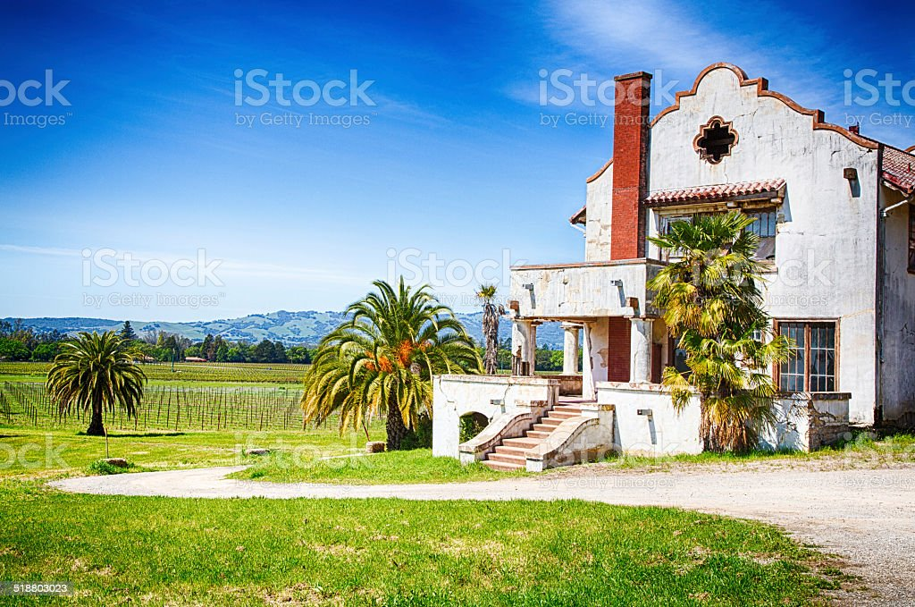 Mission Vineyard stock photo