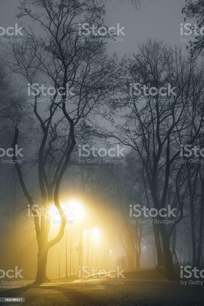 Mist city park royalty-free stock photo