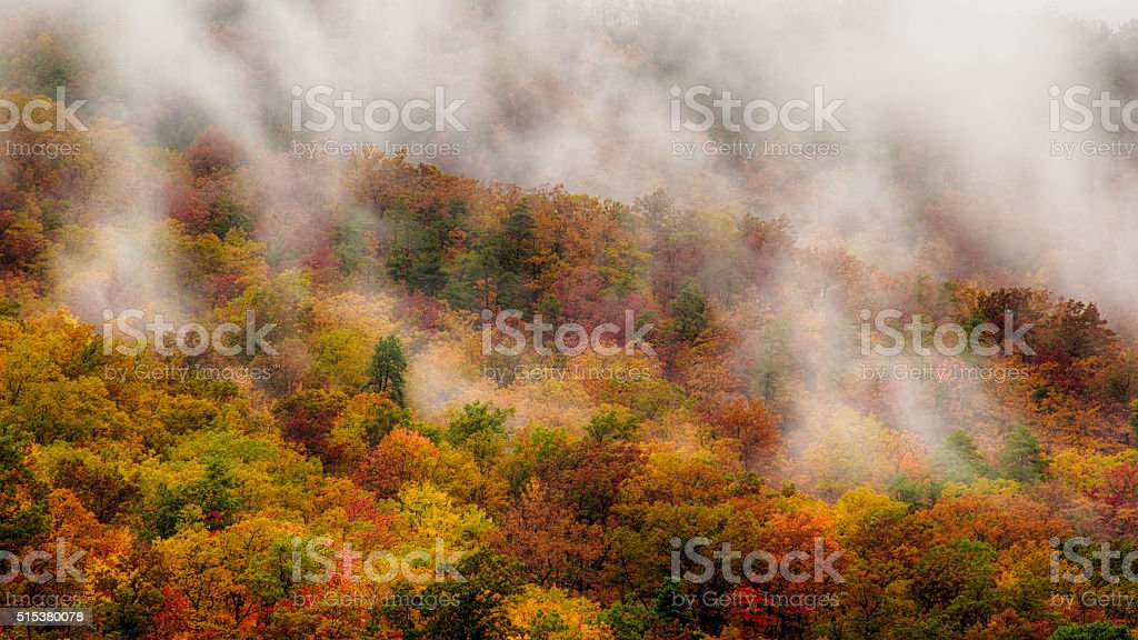 Mist Fall in the Smokies stock photo