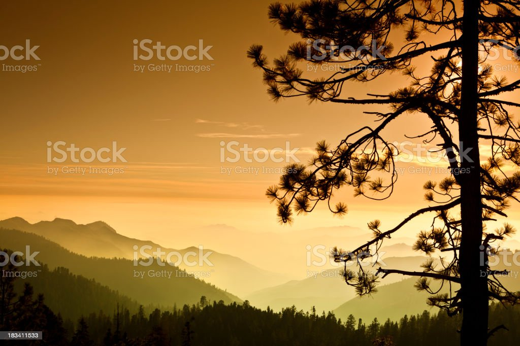 Mist on the Sierra Nevada Mountains royalty-free stock photo