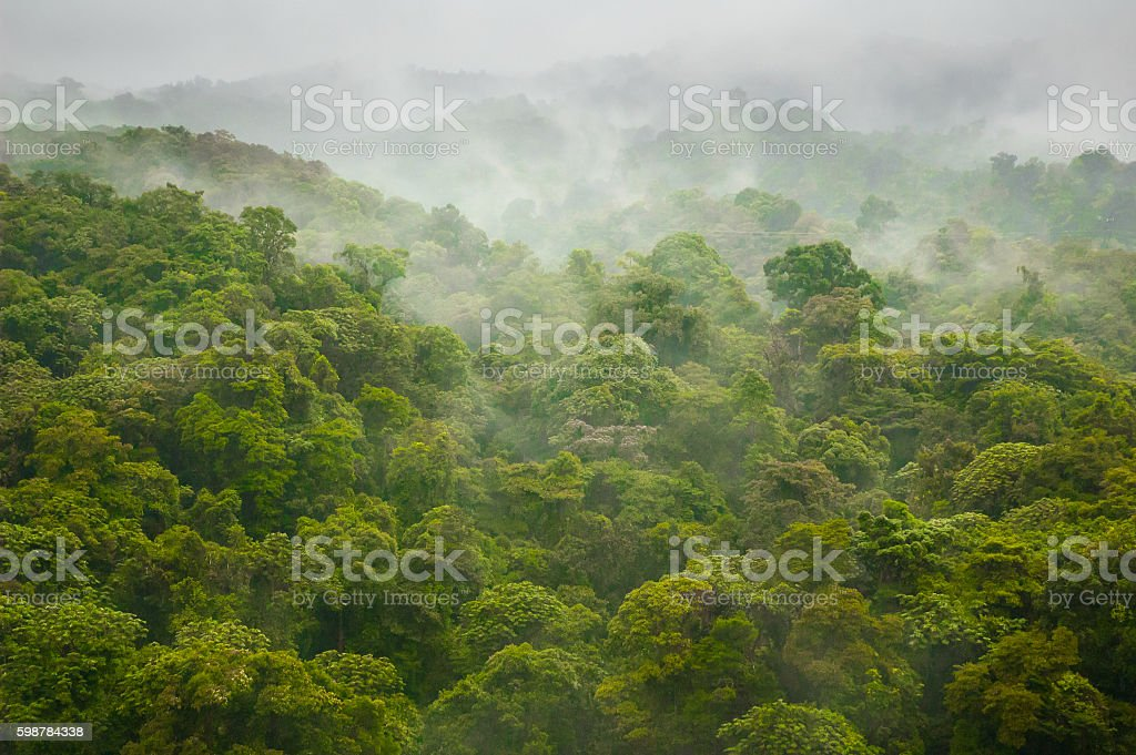 Mist Over Jungle Mountains stock photo