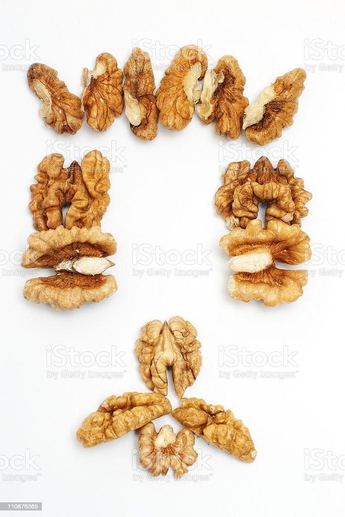 mister walnut stock photo