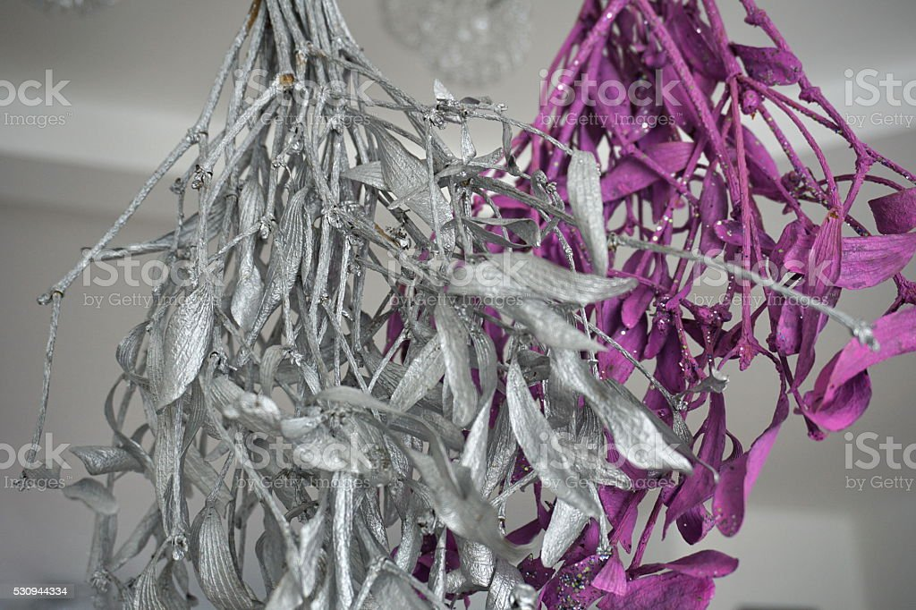 Mistletoe in violet (purple) and silver color hanging from ceiling stock photo