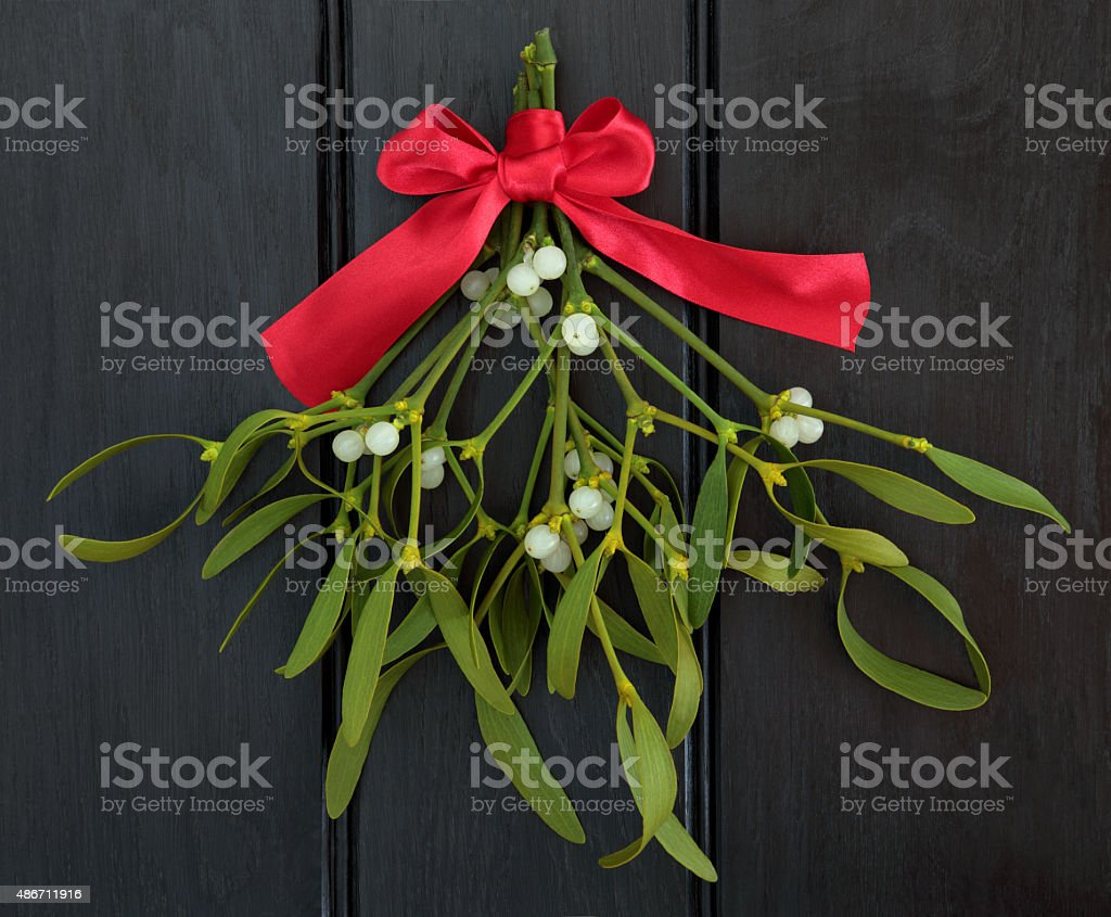 Mistletoe Kisses stock photo
