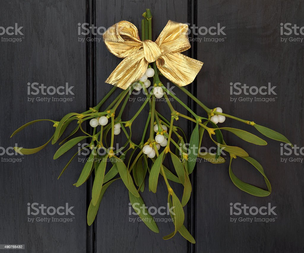 Mistletoe stock photo