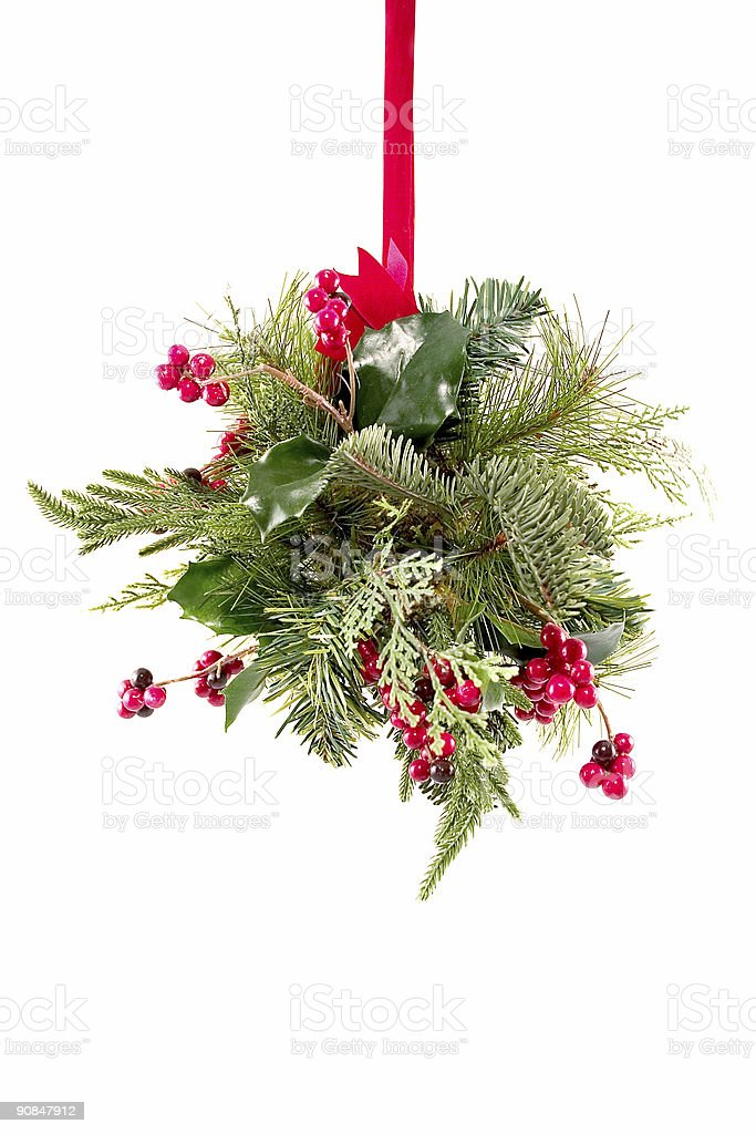 Mistletoe royalty-free stock photo
