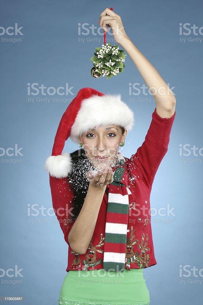 Mistletoe Snow Kisses! royalty-free stock photo