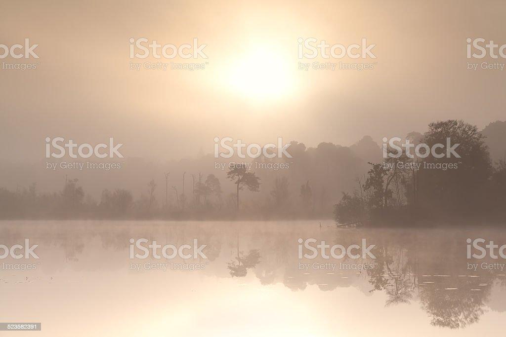 misty autumn sunrise over forest lake stock photo