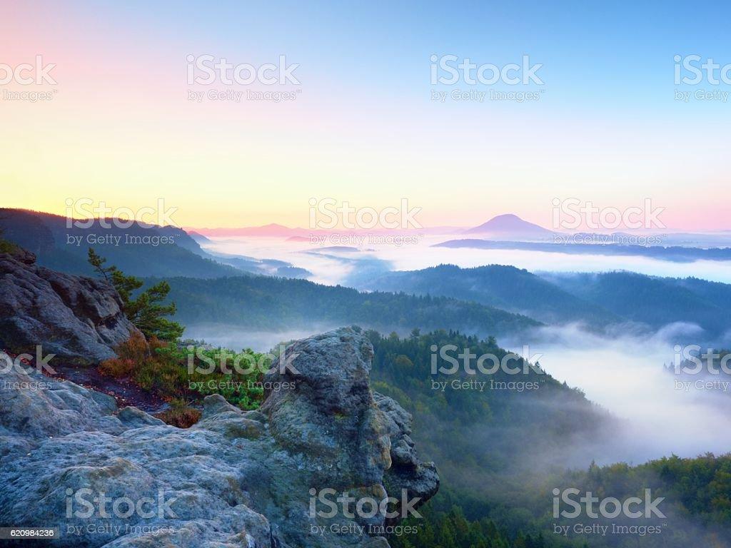 Misty awaking,  beautiful fairy valley. Peaks of rocks above  fog stock photo